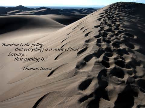 """"""" Boredom Is The Feeling That Everything Is A Waster Of Time Serenity That Nothing Is """" - Thomas Szasz"""