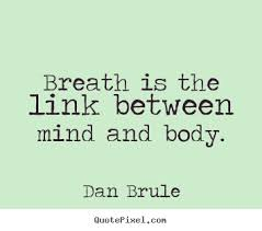 Breath Is The Link Between Mind And Body. - Dan Brule