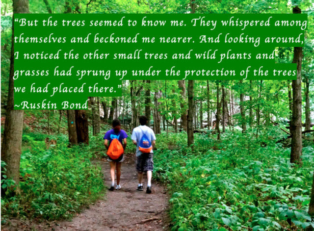 """"""" But The Trees Seemed To Know Me. They Whispered Among Themselves And Beckoned Me Nearer… - Ruskin Bond ~ Camping Quotes"""