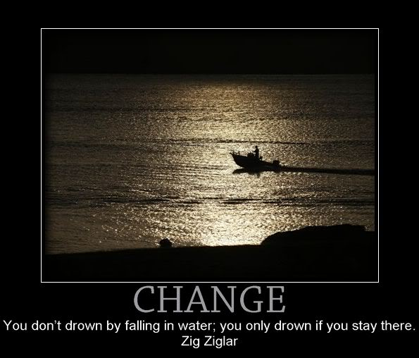 Change, You Don't Drown By Falling In Water, You Only Drown If You Stay Here. - Zig Ziglar