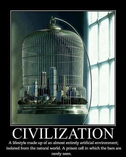 Civilization, A Lifestyle Made Up Of An Almost Entirely Artificial Environment Isolated From The Natural World A Prison Cell In Which The Bars Are Rarely Seen.