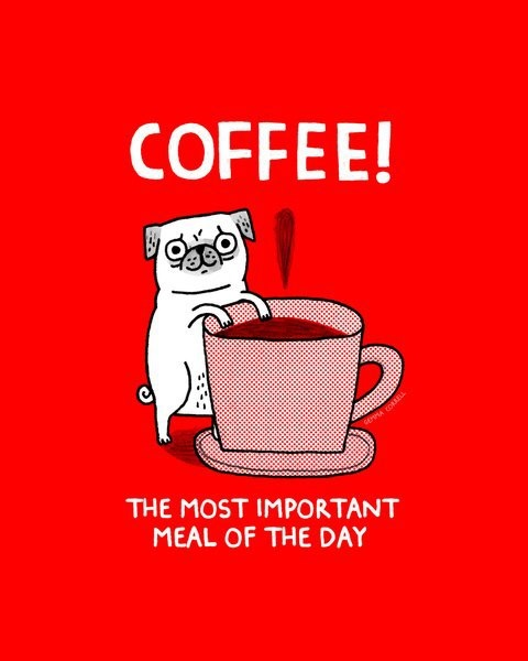 Coffee, The Most Important Meal Of The Day.