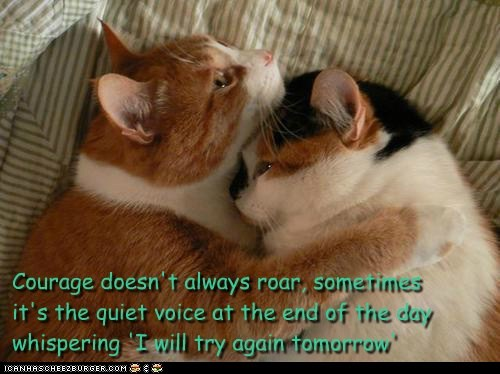 Courage Doesn't Always Roar, Sometimes It's The Quiet Voice At The End Of The Day Whispering ' I Will Try Again Tomorrow ' ~ Cat Quotes