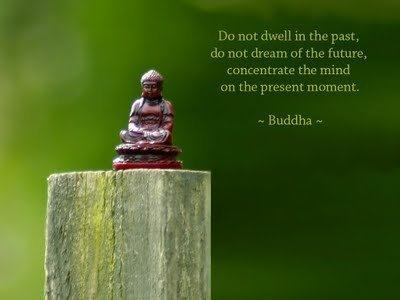 """"""" Do Not Dwell In The Past, Do Not Dream Of The Future, Concentrate The Mind On The Present Moment """" - Buddha"""
