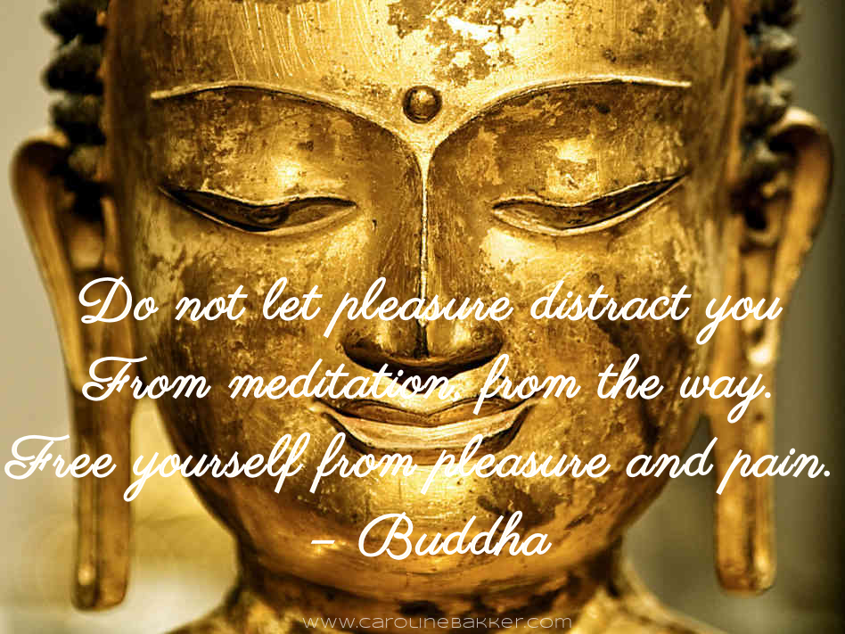 Do Not Let Pleasure Distract You From Meditation From The Way. Free Yourself From Pleasure And Pain. - Buddha