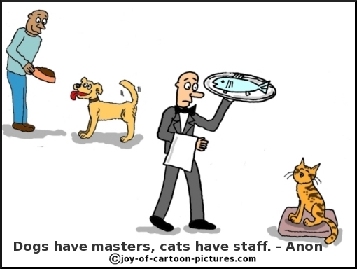 Dogs Have Masters, Cats Have Staff. - Anon