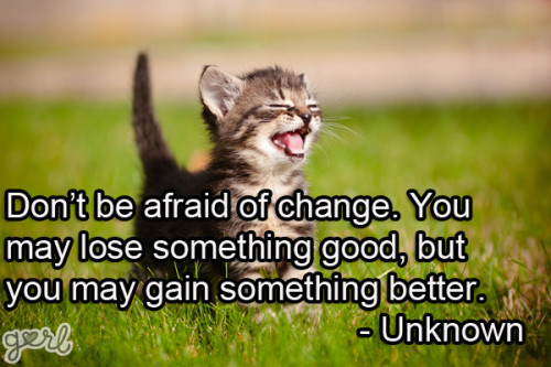 Don't Be Afraid Of Change. You May Lose Something Good, But You May Gain Something Better.