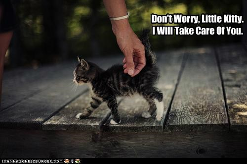 Don't Worry. Little Kitty. I Will Take Care Of You. ~ Cats Quotes