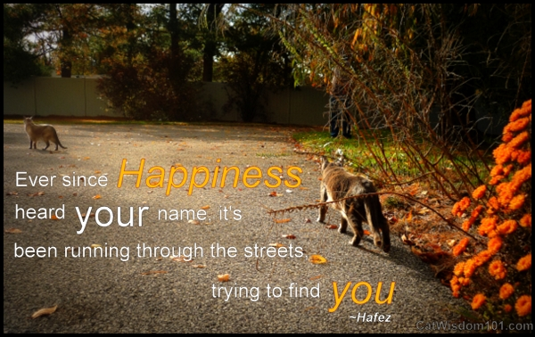 Ever Since Happiness Heard Your Name, It's Been Running Through The Streets Trying To Find You. ~ Cat Quotes