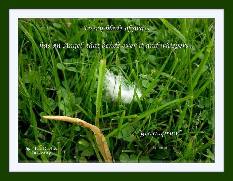 Every Blade Of Grass Has An Angel That Bends Over It And Whispers. Grow, Grow…