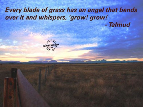 Every Blade Of Grass Has An Angel That Bends  Over It And Whispers 'Grow,Grow - Talmud