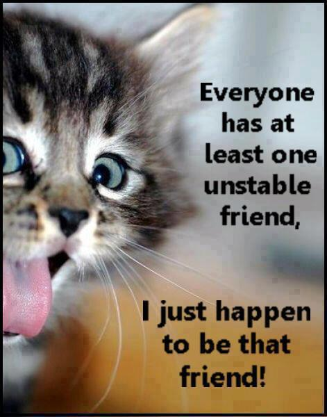 Everyone Has At Least One Unstable Friend, I Just Happen To Be That Friend. ~ Cat Quotes