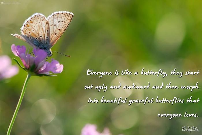 Everyone Is Like A Butterfly,  They Start Out Ugly And Awkward And Then Morph Into Beautiful Graceful Butterflies That Everyone Loves.