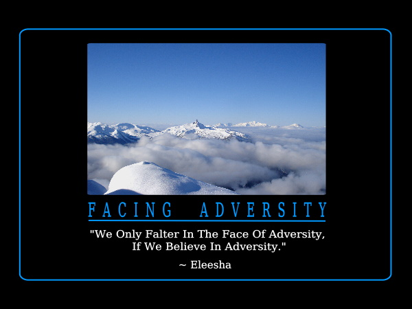facing adversity quotes like success