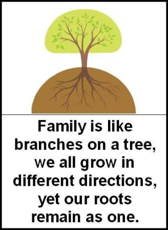 Family Is Like Branches On A Tree, We All Grow In Different Directions, Yet Our Roots Remain As One. ~ Brother Quotes
