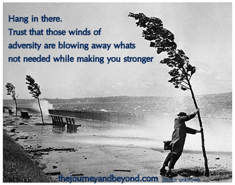 Hang In There. Trust That Those Winds Of Adversity Are Blowing Away Whats Not Needed While Making You Stronger.