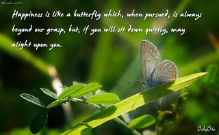 Happiness Is Like A Butterfly Which, When Pursued, Is Always Beyond Our Grasp, But, If You Will Sit Down Quietly, May Alight Upon You. -