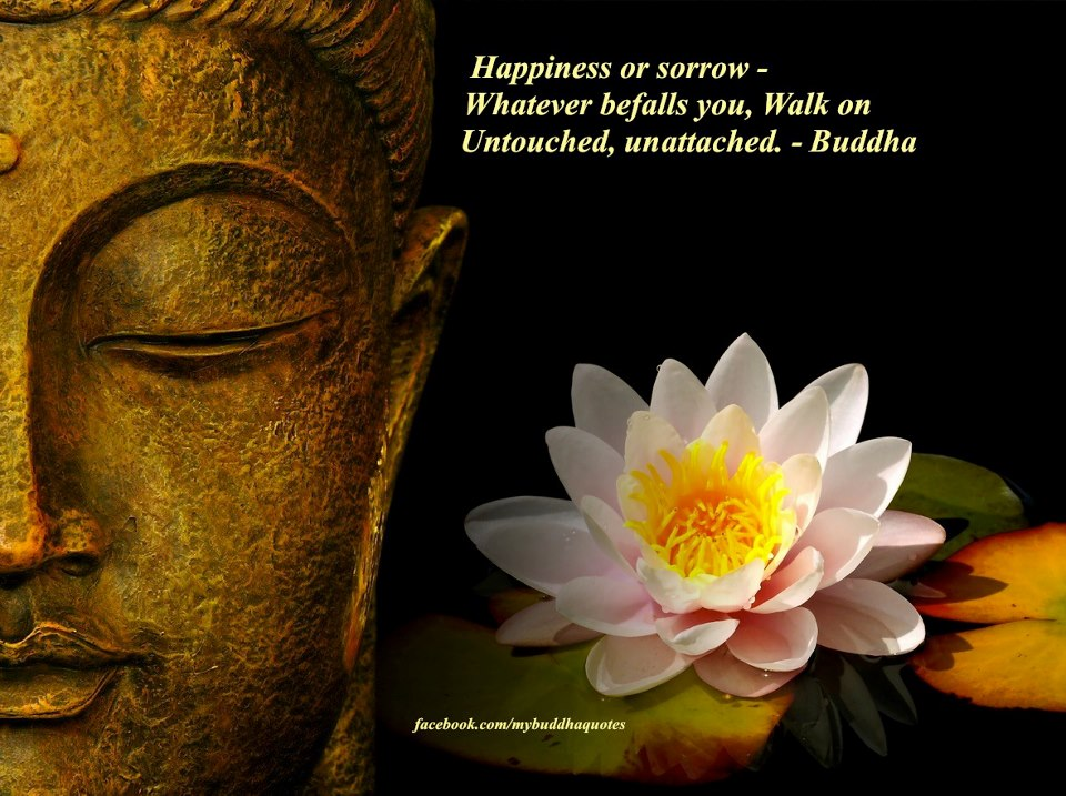 Happiness Or Sorrow, Whatever Befalls You, Walk On Untouched, Unattached - Buddha