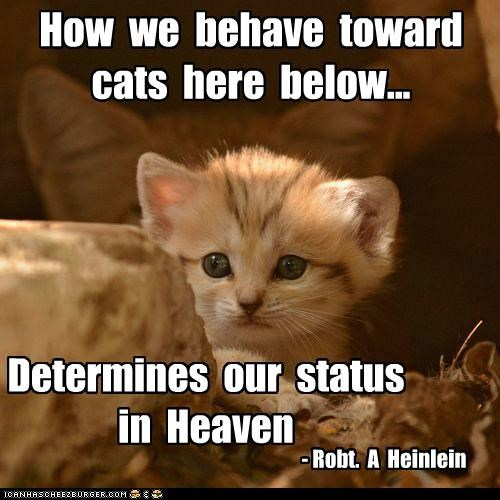 How We Behave Toward Cats Here Below, Determines Our Status In Heaven. - Robt. A Heinlein