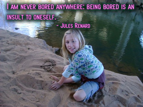 I Am Never Bored Anywhere, Being Bored Is An Insult To Oneself. - Jules Renard