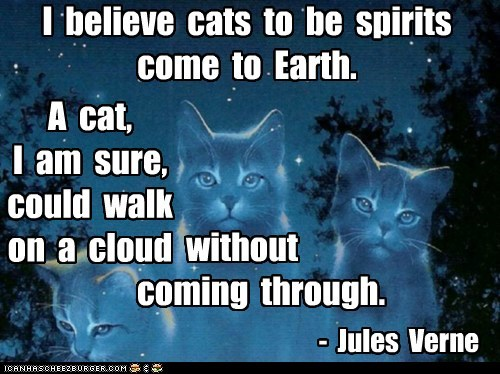 I Believe Cats To Be Spirits Come To Earth. A Cat, I Am Sure, Could Walk On A Cloud Without Coming Through. - Jules Verne