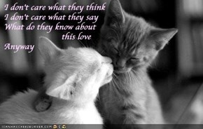 I Don't Care What They Think I Don't Care What They Say What Do They Know About This Love Anyway. ~ Cat Quotes