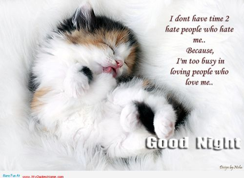 I Don\'t Have Time To Hate People Who Hate Me. Because I\'m ...
