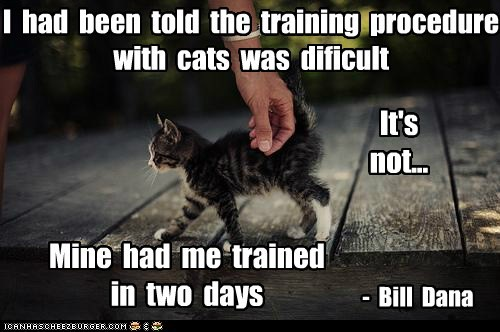 I Had Been Told The Training Procedure With Cats Was Difficult It's Not Mine Had Me Trained In Two Days - Bill Dana