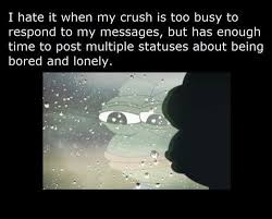 I Hate It When My Crush Is Too Busy To Respond To My Messages, But Has Enough Time To Past Multiple Statuses About Being Bored And Lonely.