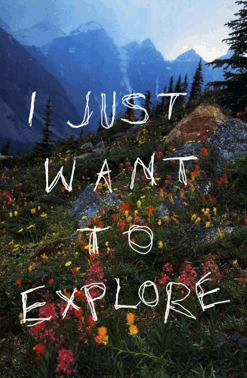 I Just Want To Explore. ~ Camping Quote