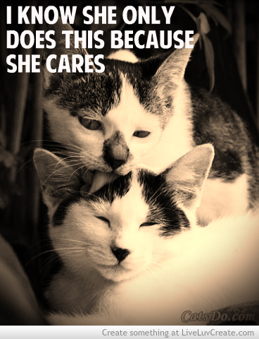 I Know She Only Does This Because She Cares. ~ Cat Quotes