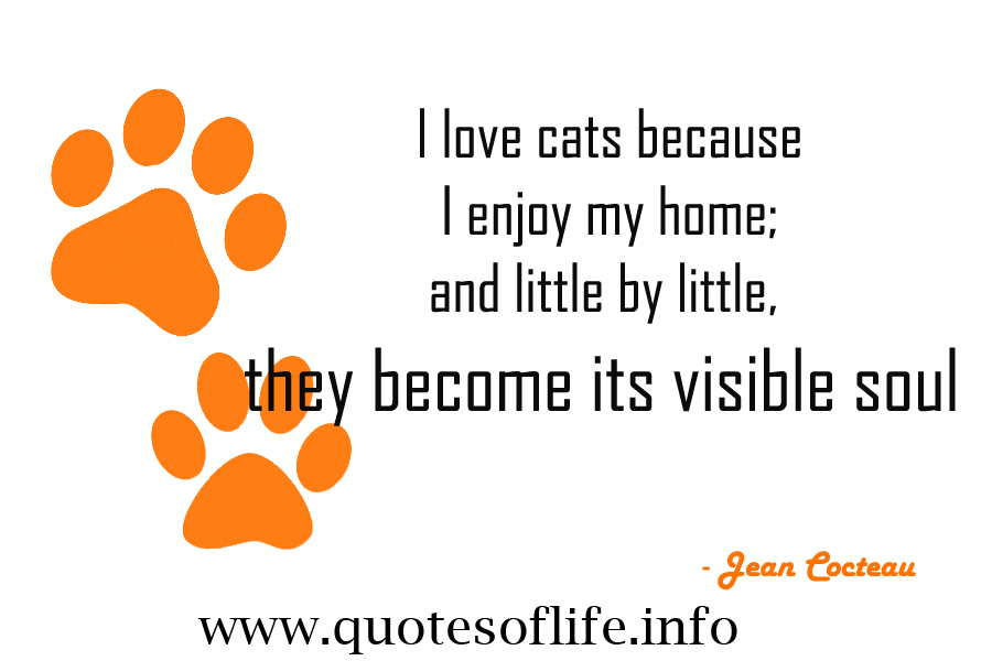 I Love Cats Because I Enjoy My Home And Little By Little. They Become Its Visible Soul