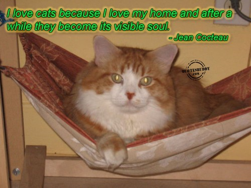 I Love Cats Because I Love My Home And After A While They Become Its Visible Soul. - Jean Cocteau