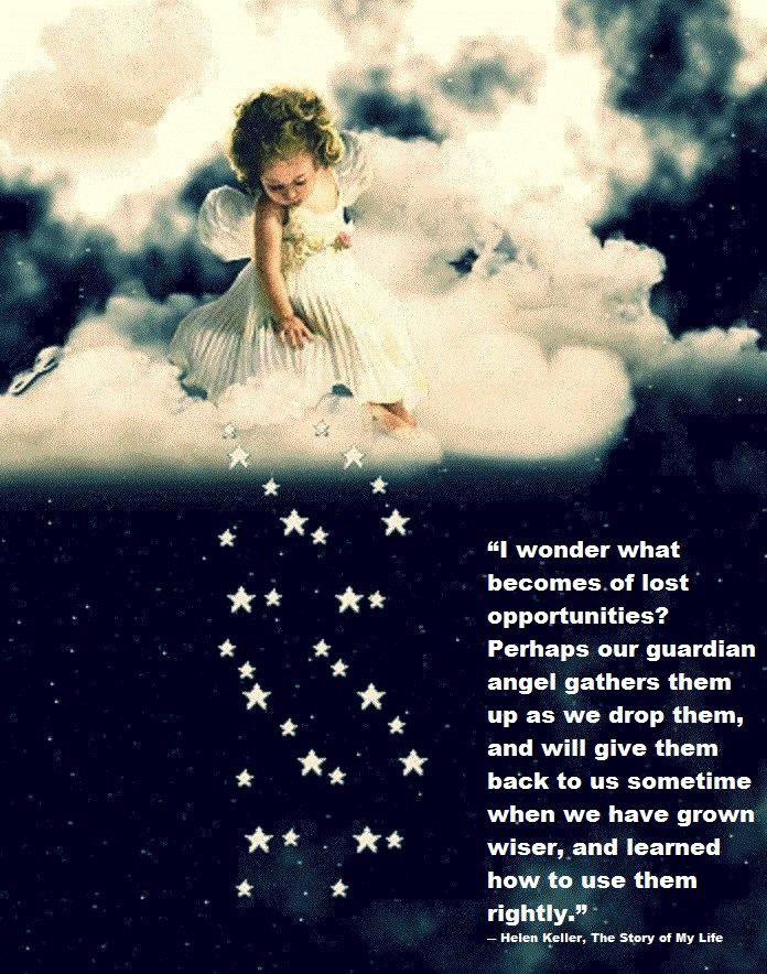 """ I Wonder What Becomes Of Lost Opportunities…  ~ Angel Quotes"