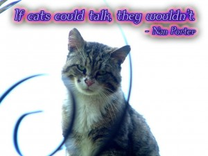 If Cats Could Talk They Wouldn't - Nan Porter