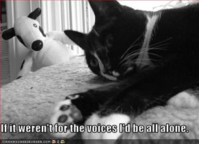 If It Weren't For The Voices I'd Be All Alone. ~ Cat Quotes