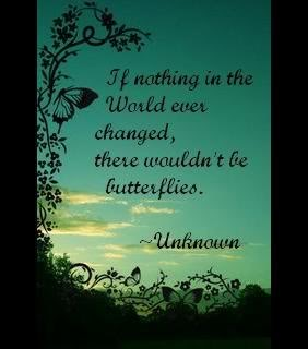 If Nothing In The World Ever Changed, There Wouldn't Be Butterflies.