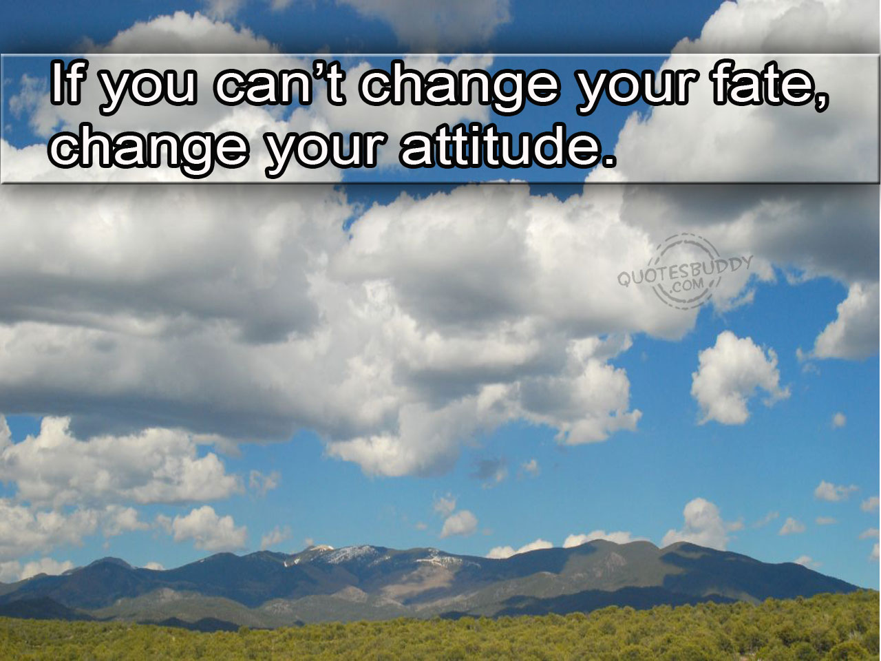 If You Can't Change Your Fate Change Your Attitude.