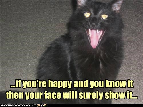 If You're Happy And You Know It Then Your Face Will Surely Show It. ~ Cat Quotes