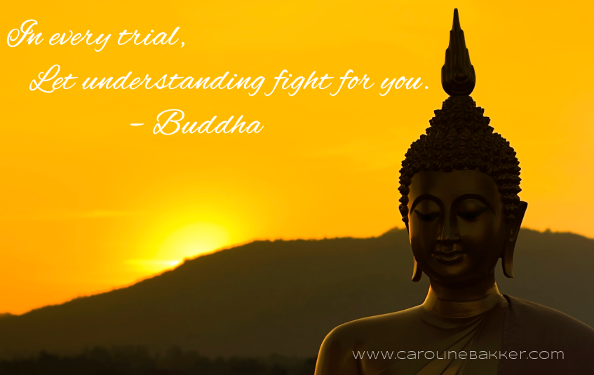 In Every Trial, Let Understanding Fight For You. - Buddha