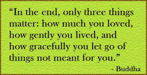 """"""" In The End, Only Three Things Matter, How Much You Loved, How Gently You Lived, And How Gracefully You Let Go Of Things Not Meant For You """" - Buddha"""