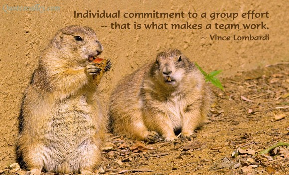Individual Commitment To A Group Effort That Is What Makes A Team Work. - Vince Lombardi
