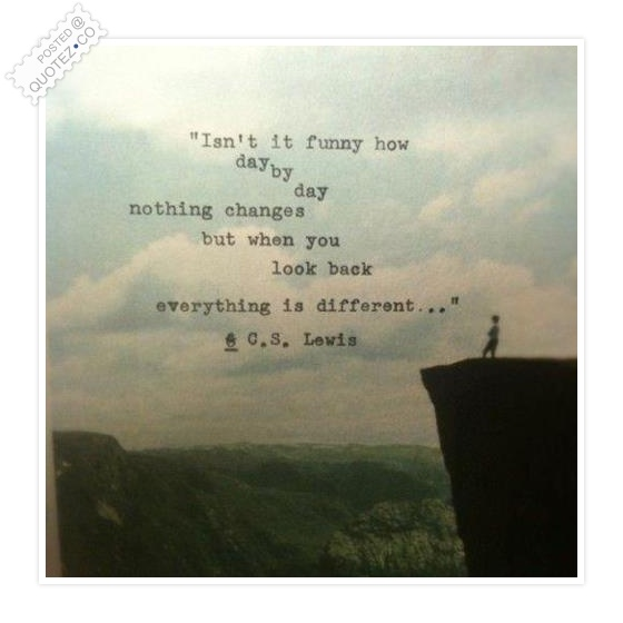 """ Isn't It Funny How Day By Day Nothing Changes But When You Look Back Everything Is Different "" - C.S. Lewis"