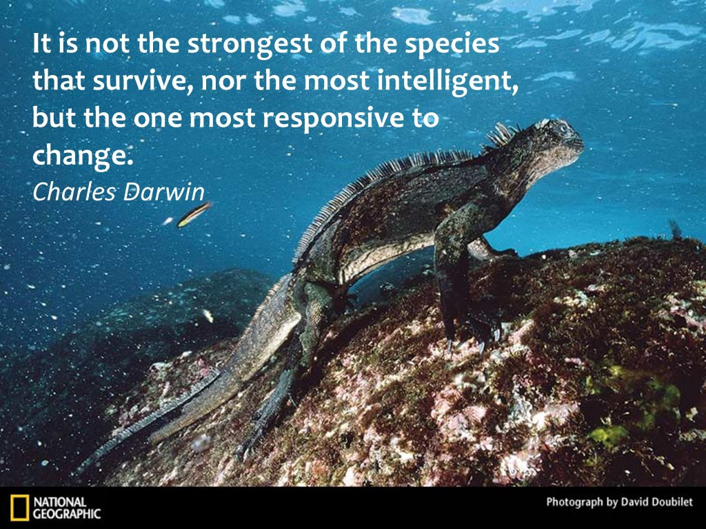""" It Is Not The Strongest Of The Species That Survive, Nor The Most Intelligent, But The One Most Responsive To Change "" - Charles Darwin"