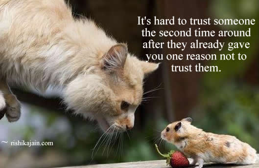 It's Hard To Trust Someone The Second Time Around After They Already Gave You One Reason Not To Trust Them. ~ Cats Quotes