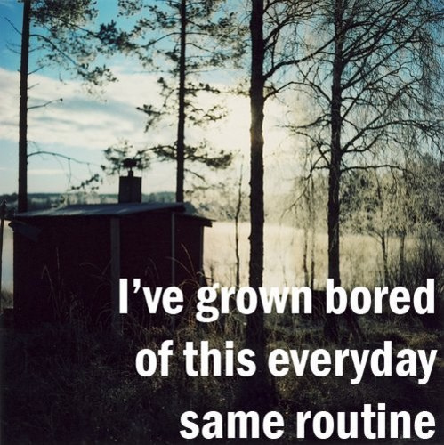 I've Grown Bored Of This Everyday Same Routine.