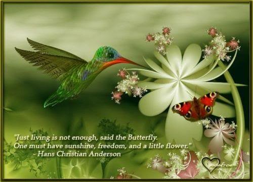 """ Just Living Is Not Enough, Said The Butterfly. One Must Have Sunshine, Freedom, And A Little Flower "" - Hans Christian Anderson"