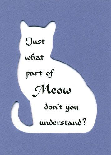 Just What Part Of Meow Don't You Understand. ~ Cat Quotes