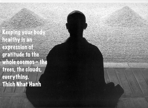 Keeping Your Body Healthy Is An Expression Of Gratitude To The Whole Cosmos- The Trees, The Clouds, Everything - Thich Nhat Hanh