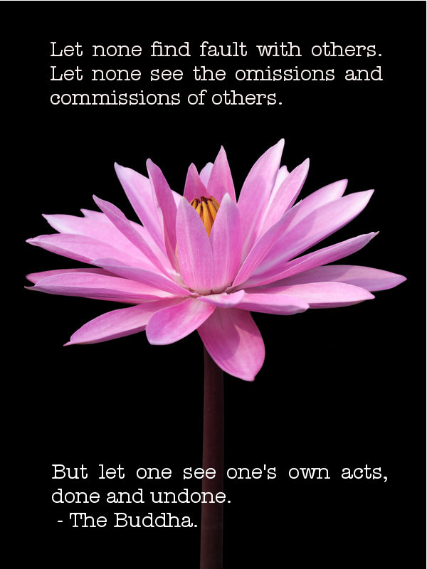 Let None Find Fault With Others. Let None See The Omissions And Commissions Of Others. But Let One See One's Own Acts, Done And Undone. - The Buddha
